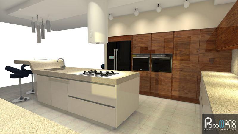 Projekt kuchni  wizualizacja 3  MONO