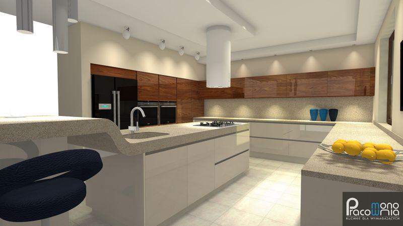 Projekt kuchni  wizualizacja 3  MONO -> Projekt Kuchni Duzej