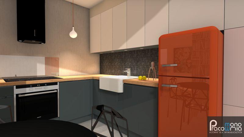 Pracownia Mono  Projektowanie kuchni i mebli kuchennych  MONO -> Projekt Kuchnia Restauracja Koszalin