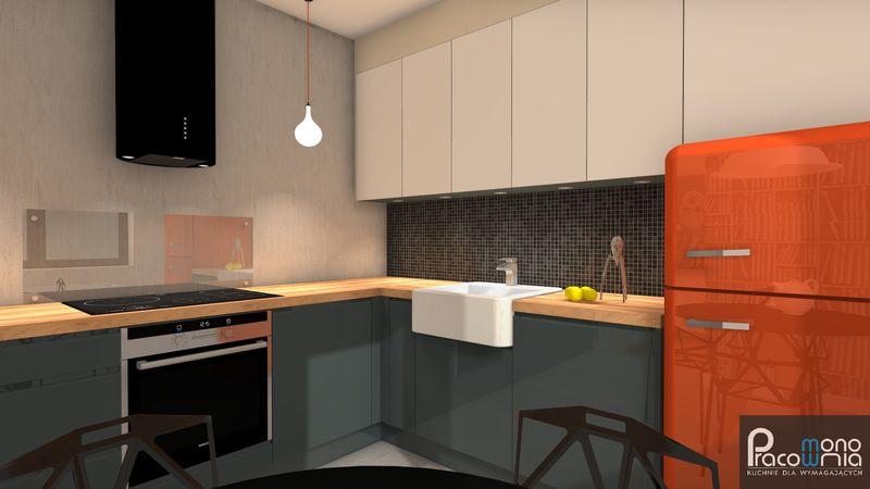 projekt-kuchnia-aleksandra-12