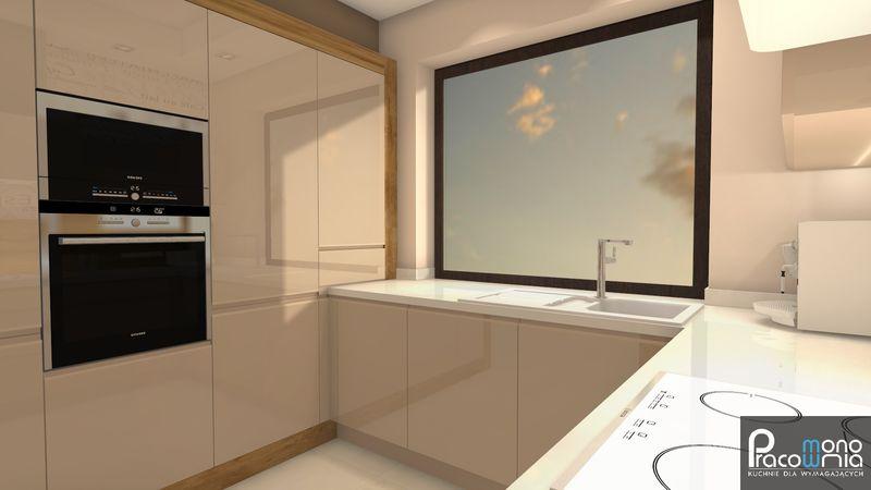 Projekt kuchni  projektant kuchni Pracownia Mono  MONO -> Projekt Kuchnia Restauracja Koszalin